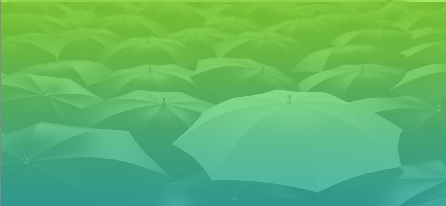 placeholder-img_insurance_02